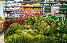 6 Makanan ini Bisa Menurunkan Resiko Terkena Kanker Paru-paru - JPNN.com