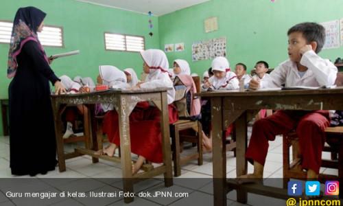 Rekrutmen CPNS 2018, Formasi Guru Butuh 557 Orang