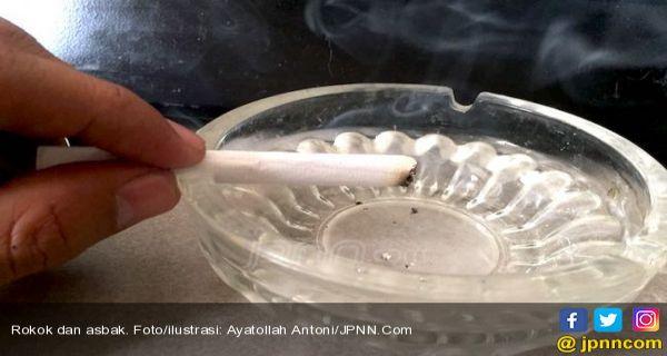 IYPG: Pemerintah Perlu Maksimalkan Konsep Pengurangan Risiko Tembakau - JPNN.COM