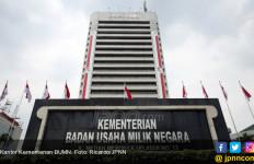 Usul Menko Luhut untuk Jual BUMN Dinilai Langgar Konstitusi - JPNN.com