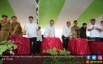 Mentan dan Mendes Bangun Bengkulu Lewat Produksi Jagung - JPNN.COM