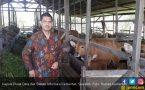 Neraca Perdagangan Komoditas Pertanian Mengalami Surplus - JPNN.COM