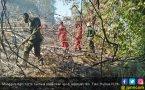 Manggala Agni Berhasil Padamkan Api di Kalimantan - JPNN.COM