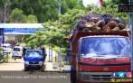 Ekspor CPO Harus Digenjot demi Kendalikan Nilai Tukar Rupiah - JPNN.COM