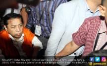 Papa Novanto Juga Disalahkan Atas Kedatangan WNA Tiongkok - JPNN.COM