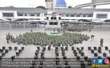 Ratusan Buaya Putih Sudah Bergerak Menuju Perbatasan RI-PNG - JPNN.COM