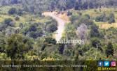 Pembangunan Rempang Galang Terhambat karena Status Hutan - JPNN.COM