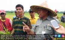Kepala BPPSDMP Kementan Apresiasi Anak Muda Bertani - JPNN.COM