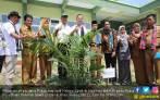 Sekolah Sawit Untuk Pengelolaan Berkelanjutan - JPNN.COM