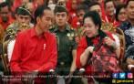 Pak Jokowi Tambah Usia, Ini Harapan PDIP dan Bu Mega - JPNN.COM