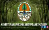 KLHK Siaga Tangani Karhutla di Kalimantan Barat - JPNN.COM