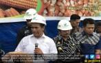Wow! Mentan Sebut Gubernur Sulsel Bung Karno Baru - JPNN.COM