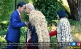 Cium Hidung Ala Maori Sambut Kehadiran Presiden Jokowi - JPNN.COM