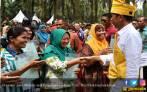 Di Depan Jokowi, Honorer K2 Riau Minta Diangkat CPNS - JPNN.COM