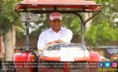Gaya Menteri Amran Garap Sawah dengan Traktor - JPNN.COM