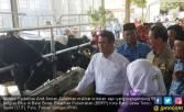 Jadikan Teknologi Pertanian di Batu Sebagai Role Model - JPNN.COM