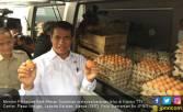 Kementan Gelar Operasi Pasar Telur untuk Menstabilkan Harga - JPNN.COM