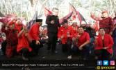 Hasto: PDIP Obor Penerang Pergerakan Rakyat - JPNN.COM