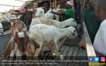 Penipu Sasar Jemaah Haji Indonesia di Makkah, Raup Rp 7 M - JPNN.COM