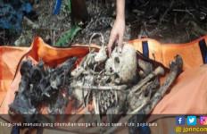 Penemuan Tengkorak Manusia di Kebun Sawit Gegerkan Warga - JPNN.com