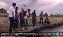 Tim Kirab Satu Negeri GP Ansor Tanam 1.000 Mangrove di Papua