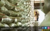 Indonesia Surplus Beras 2,85 Juta Ton, Kementan Panen Pujian - JPNN.COM