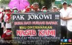 Surat Terbuka dari Honorer K2 untuk Presiden Jokowi - JPNN.COM