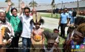 Dari Singapura, Jokowi Langsung Kunker ke Papua - JPNN.COM