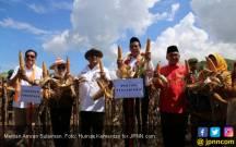 Kementan Raih Penghargaan Ketahanan Pangan, FAO Apresiasi - JPNN.COM