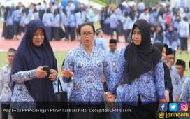 Guru Honorer K2 Usia 59 Tahun Bisa Daftar PPPK - JPNN.COM