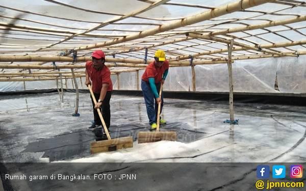 Anggaran Terbatas, PT Garam Sulit Serap Garam Rakyat - JPNN.com