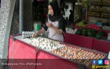 Pakan Ternak Mahal, Harga Telur Ikut Naik - JPNN.COM