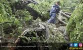 Waspada, Dua Hari ke Depan Masih Berpotensi Hujan Angin - JPNN.COM