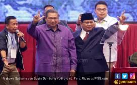 Pak SBY Absen di Debat Perdana, Ini Kata Ruhut Sitompul - JPNN.COM