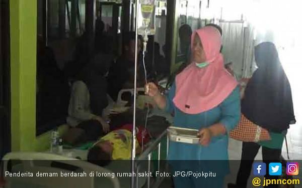 Pasien Demam Berdarah Membeludak di RSUD - JPNN.com
