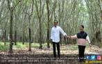 Jokowi dan Iriana Berpose Romantis di Kebun Karet - JPNN.COM