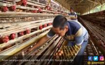 KTNA: Bertani Kini Lebih Mudah dan Menguntungkan - JPNN.COM