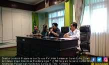 Gandeng TNI AD, Kementan Maksimalkan Potensi Lahan Rawa di Lampung