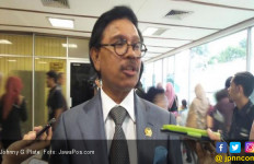 Partai NasDem Langsung Bebastugaskan Gubernur Kepri dari Jabatan Ketua DPW - JPNN.com