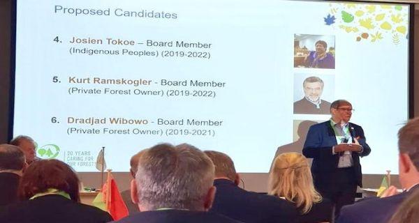 Selamat, Dradjad Wibowo Terpilih Jadi Board Member PEFC - JPNN.COM