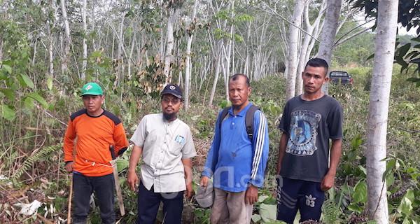 Pohon Sengon Berdampak Positif Bagi Pesantren Hidayatullah Balikpapan - JPNN.com