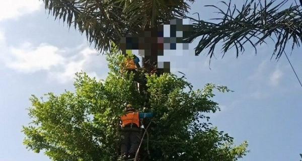 Kabel PLN Membunuh Made Terpi - JPNN.com