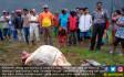 Jelang Idul Adha, Warga Dihantui Mutilasi Ternak - JPNN.COM