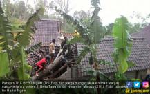 Rumah Tertimpa Pohon di Desa Tawangrejo - JPNN.COM