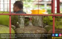 Kelangkaan Gas 3 Kg Terjadi di Banjarmasin - JPNN.COM