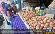Perlahan, Harga Telur Mulai Naik - JPNN.COM