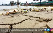 Debit Sungai Batanghari Terus Menyusut - JPNN.COM