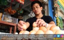 Hingga Kini, Harga Telur Masih Tinggi - JPNN.COM