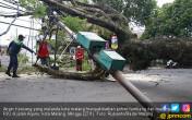 Angin Kencang Landa Kota Malang - JPNN.COM