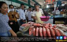 Alhamdulillah, Harga Ikan Masih Stabil - JPNN.COM